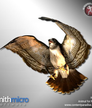 Hawk (Wildlife Series) Legacy Discounted Content Smith_Micro