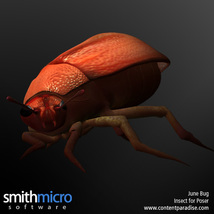 June Bug image 1
