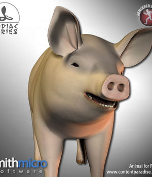 Pig (Chinese Zodiac Series) Legacy Discounted Content Smith_Micro