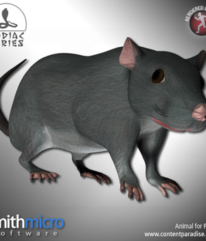 Rat (Chinese Zodiac Series) Legacy Discounted Content Smith_Micro