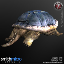 Snapping Turtle image 1