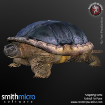 Snapping Turtle image 2