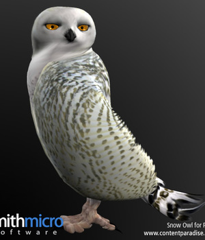 Snow Owl Legacy Discounted Content Smith_Micro