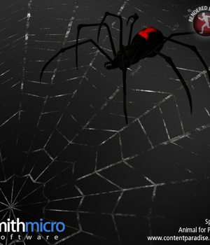 Black Widow Spider Legacy Discounted Content Smith_Micro