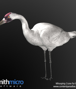 Whooping Crane Legacy Discounted Content Smith_Micro