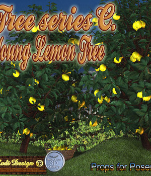 Young Lemon Tree Legacy Discounted Content Rodi_Design