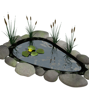Fish pond Legacy Discounted Content uncle808us