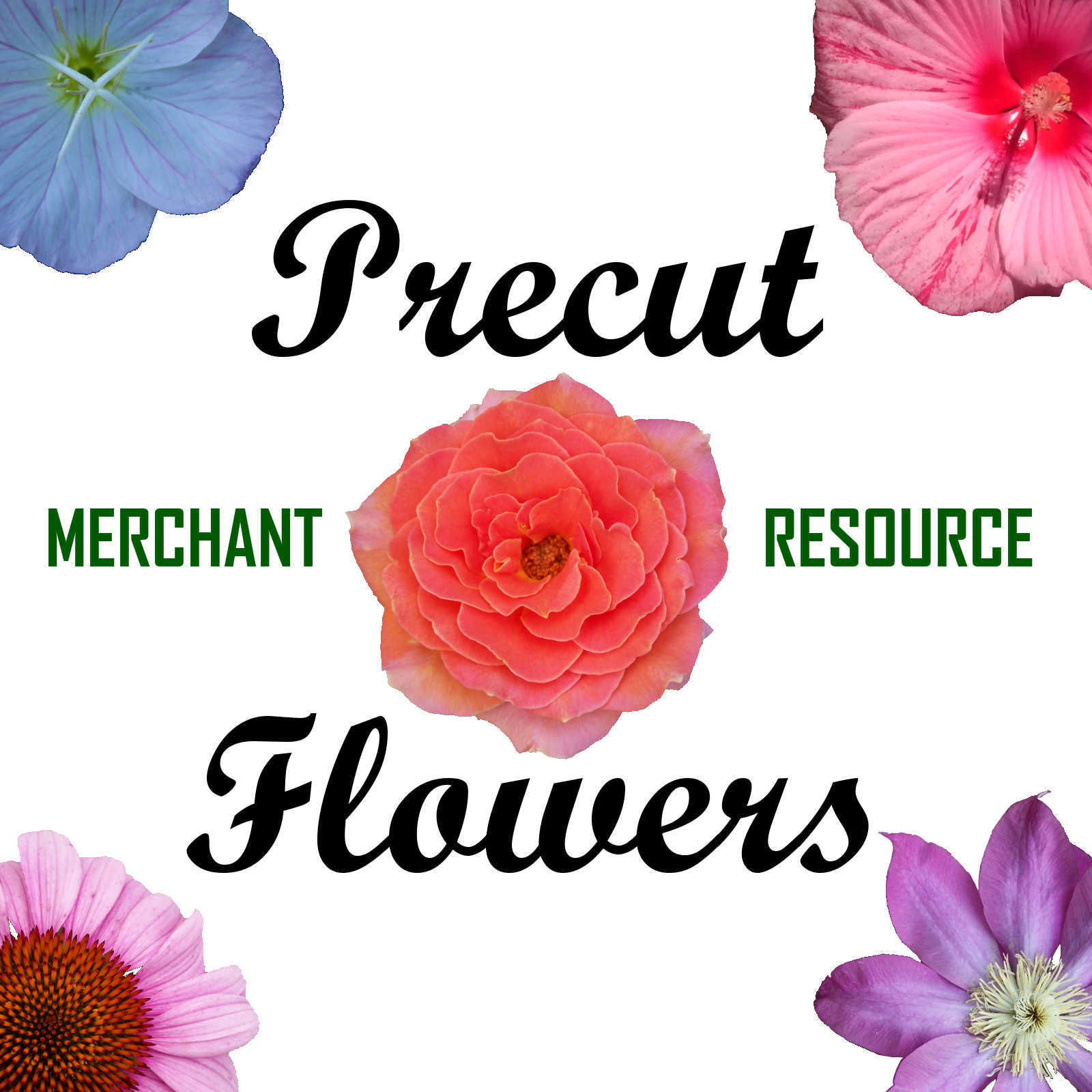 PRECUT FLOWERS, Digital Images and Merchant Resource for Poser and Daz Studio