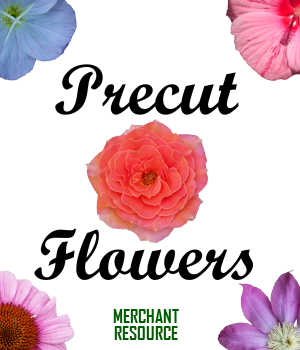PRECUT FLOWERS, Digital Images and Merchant Resource for Poser and Daz Studio 2D Graphics Merchant Resources Winterbrose