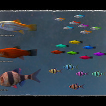 3D Underwater Fauna: Aquarium Fishes image 2