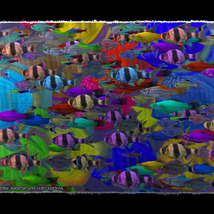 3D Underwater Fauna: Aquarium Fishes image 4