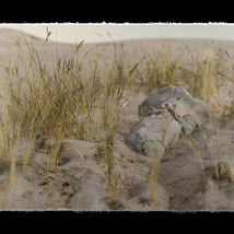 3D Scenery: Dried Out River for Daz Studio image 1