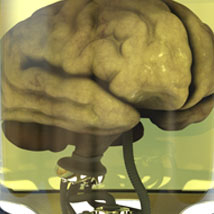 Brain Copy Machine for Poser and DS image 1