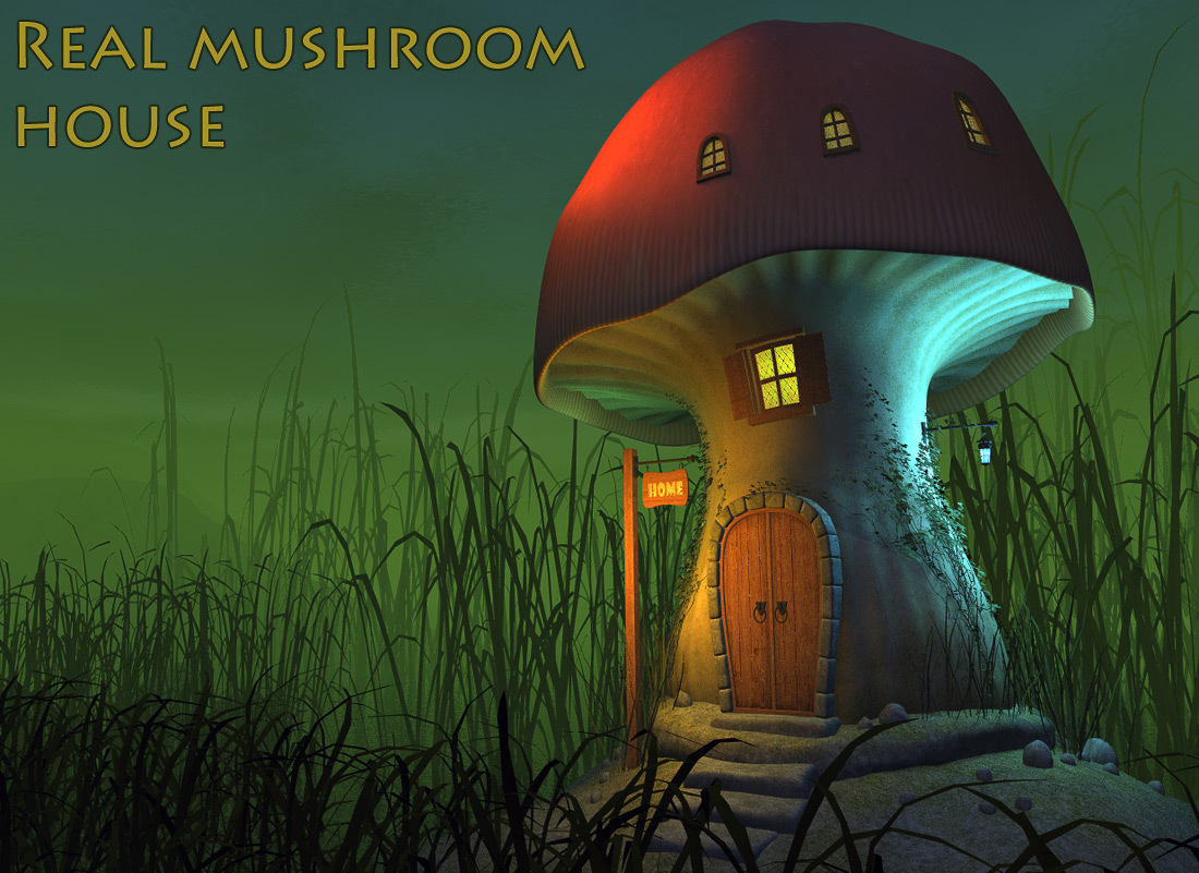 Real mushroom house by 1971s
