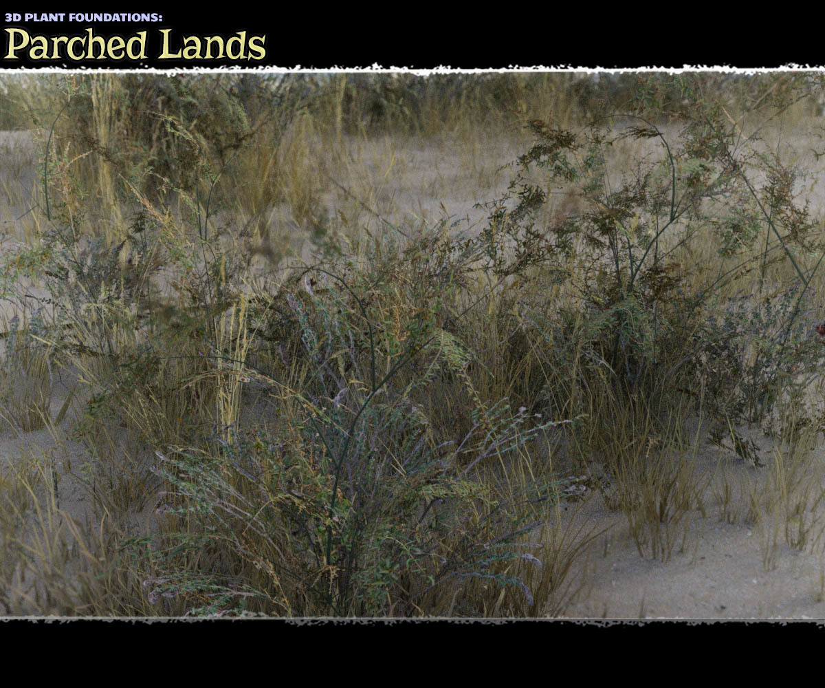 Plant Foundations: Parched Lands - Extended License by ShaaraMuse3D
