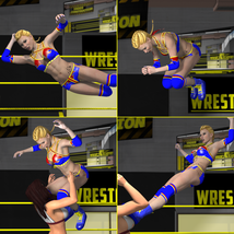Aerial Attack Poses for V4 image 1