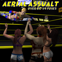 Aerial Attack Poses for V4 image 4