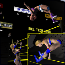 Aerial Attack Poses for V4 image 5