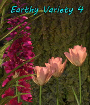 FB Earthy Variety 4 Background Images 2D Graphics fictionalbookshelf