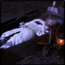 Coffin Around Poses for G8F image 1