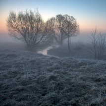 Foggy morning image 1