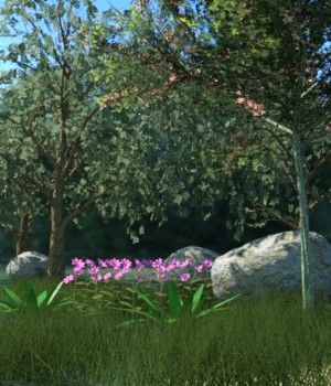 Nature Collection 3D Models JeffersonAF