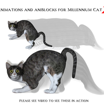 Animations and aniBlocks for Millennium Cat 2 image 3