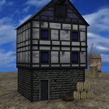 Medieval Village for DAZ Studio image 3