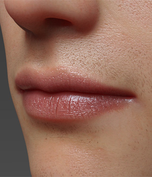 Lips Morphs for G8M Vol 1 3D Figure Assets Merchant Resources Anagord