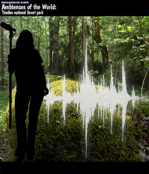 Shaaramuse Audio: Ambiences of the World - Tiveden National Forest Park Music  : Soundtracks : FX ShaaraMuse3D