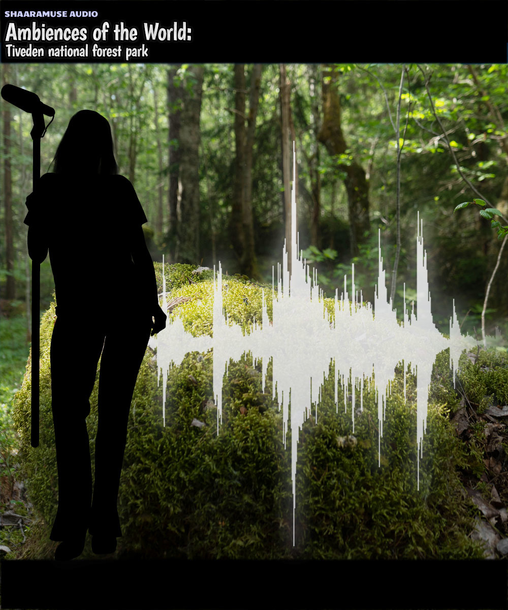 Shaaramuse Audio: Ambiences of the World - Tiveden National Forest Park - Extended License