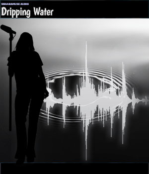Shaaramuse Audio: Dripping Water - Extended License Extended Licenses Music  : Soundtracks : FX ShaaraMuse3D