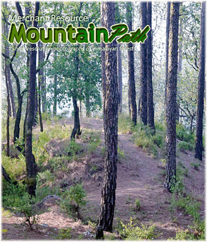 Mountain Path 2D Graphics Merchant Resources RajRaja