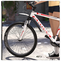 STZ Bicycle image 4