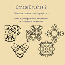 Ornate Brushes and PNGs 2 image 2
