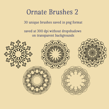 Ornate Brushes and PNGs 2 image 3