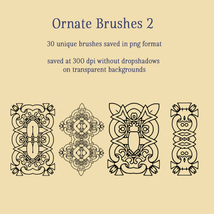 Ornate Brushes and PNGs 2 image 4