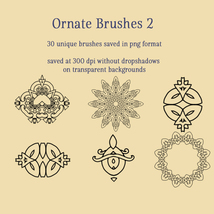 Ornate Brushes and PNGs 2 image 5
