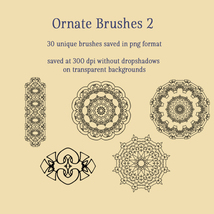 Ornate Brushes and PNGs 2 image 6