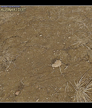 Panoramic Texture Resource: Alonaki Dirt 2D Graphics Merchant Resources ShaaraMuse3D