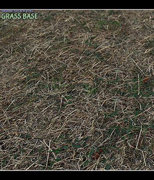 Panoramic Texture Resource: Grass Base 2D Graphics Merchant Resources ShaaraMuse3D