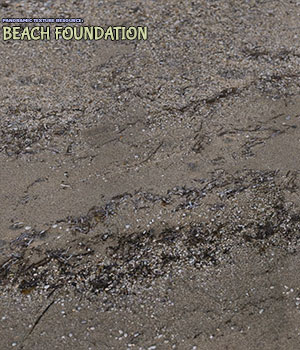 Panoramic Texture Resource: Beach Foundation 2D Graphics 3D Figure Assets Merchant Resources ShaaraMuse3D
