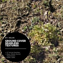 12 Ground Cover PBR Seamless Textures image 3