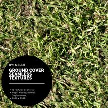 12 Ground Cover PBR Seamless Textures image 11