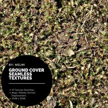12 Ground Cover PBR Seamless Textures image 12