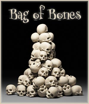 Bag of Bones 3D Models caisson