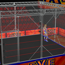 Cages 2 for Dex's Wrestling Set (poser 7+) image 1