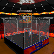 Cages 2 for Dex's Wrestling Set (poser 7+) image 3