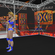 Cages 2 for Dex's Wrestling Set (poser 7+) image 8