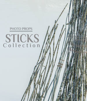 Photo Props: Stick Collection 3D Models ShaaraMuse3D